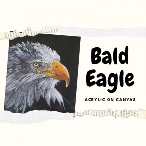 Bald Eagle - Acrylic on Canvas