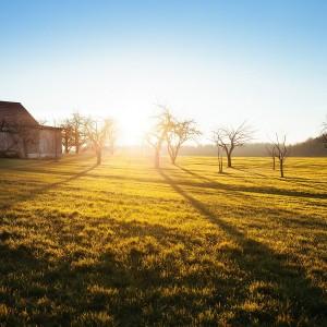 Summer Landscape with Farm Building