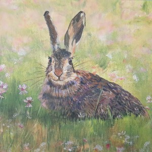 Hare in Clover - Current Series